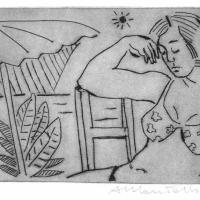 The nap 2007
